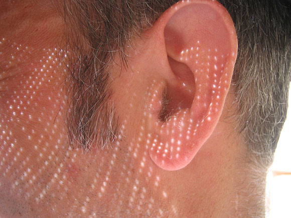 Post image for Ear Worms are Out, Insect Listening is In