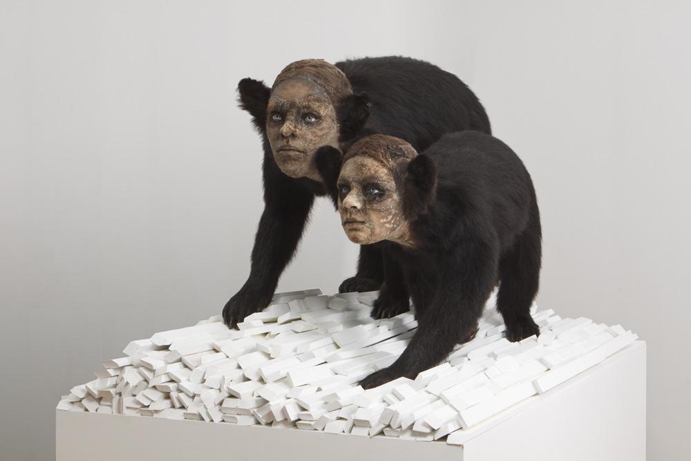 fortitude-black-bears-kate-clark
