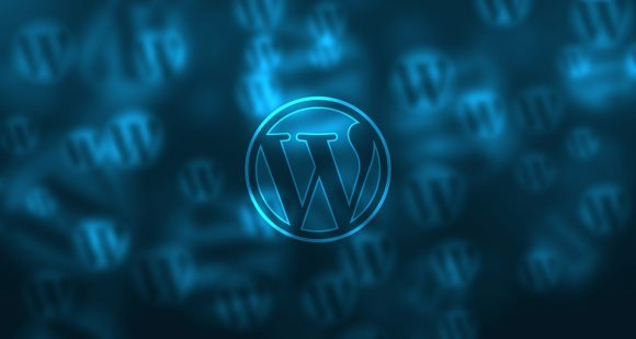 Post image for Is WordPress the Best Option for Your Site?