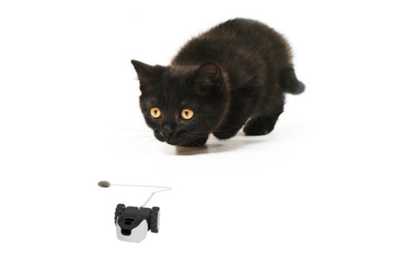 Post image for Petronics Mousr Interactive Robotic Cat Toy