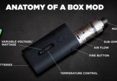 anatomy of a box mod
