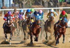 horse racing sandown cup australia